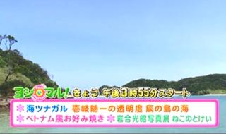 8月3日(水)壱岐 たつのしま