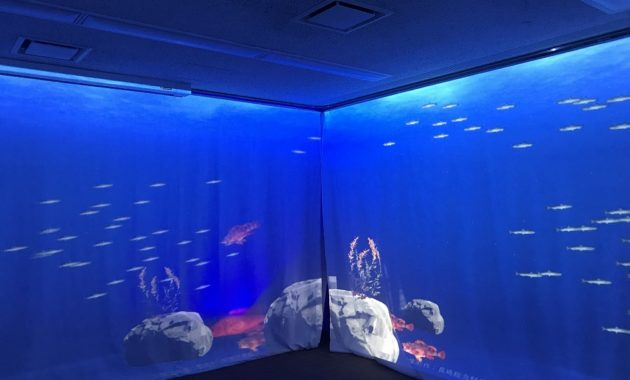 デジタル水族館(会場内)
